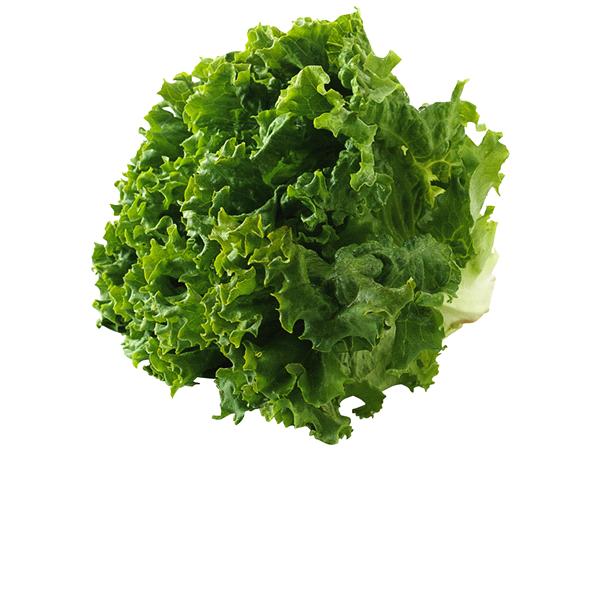 green leaf lettuce bunch meijer com