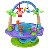 Meijer.com deals on Summer Infant Deluxe Superseat Island Giggle
