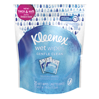 Wet Wipes | Meijer.com