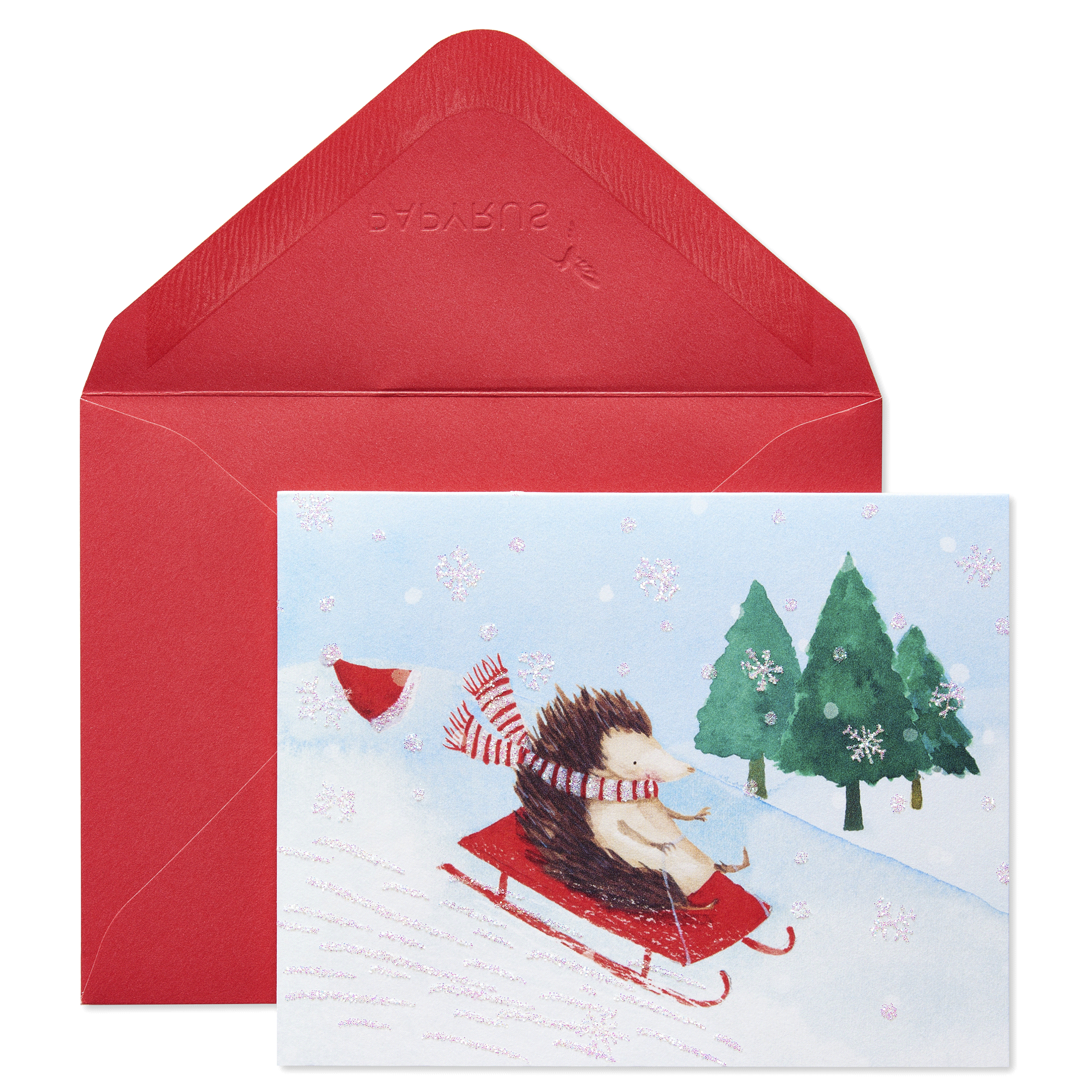 Papyrus Hedgehog In Sleigh Prelude Holiday Boxed Cards | Meijer.com