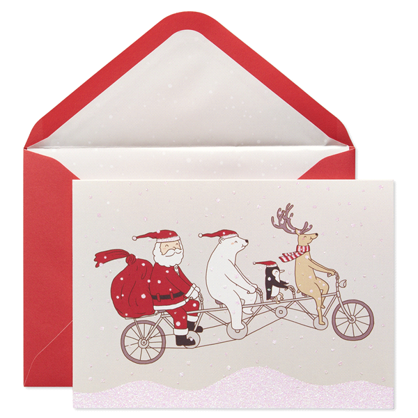 papyrus santa on flying bike sonata holiday boxed cards