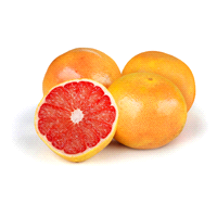 3238a0f2eb Red Grapefruit 5 lbs