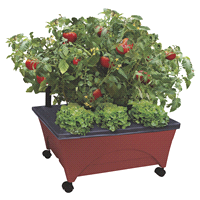 Meijer.com deals on Bountiful Harvest Patio Garden Grow Box Kit