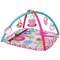 Deals on Bright Starts Charming Chirps Activity Gym