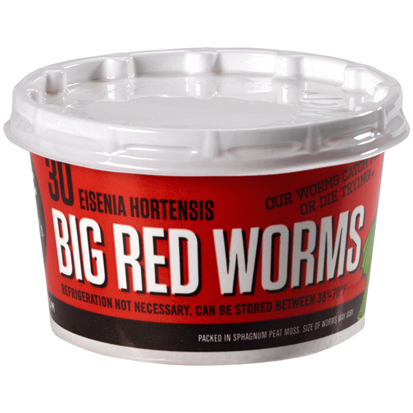 Dmf Bait Red Worms 30 Ct