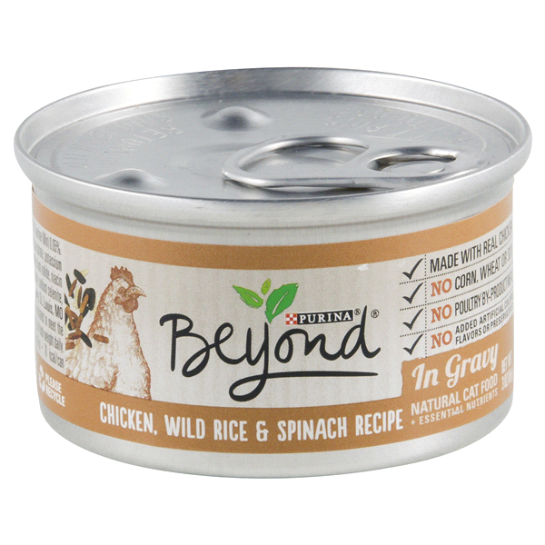 Purina beyond chicken wild rice spinach recipe in gravy cat food 3 purina beyond chicken wild rice spinach recipe in gravy cat food 3 oz forumfinder Image collections