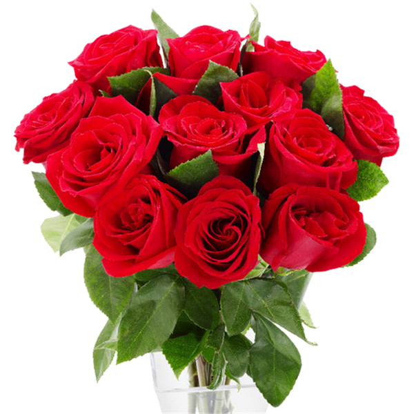 Red Rose Bouquet Dozen | Meijer.com