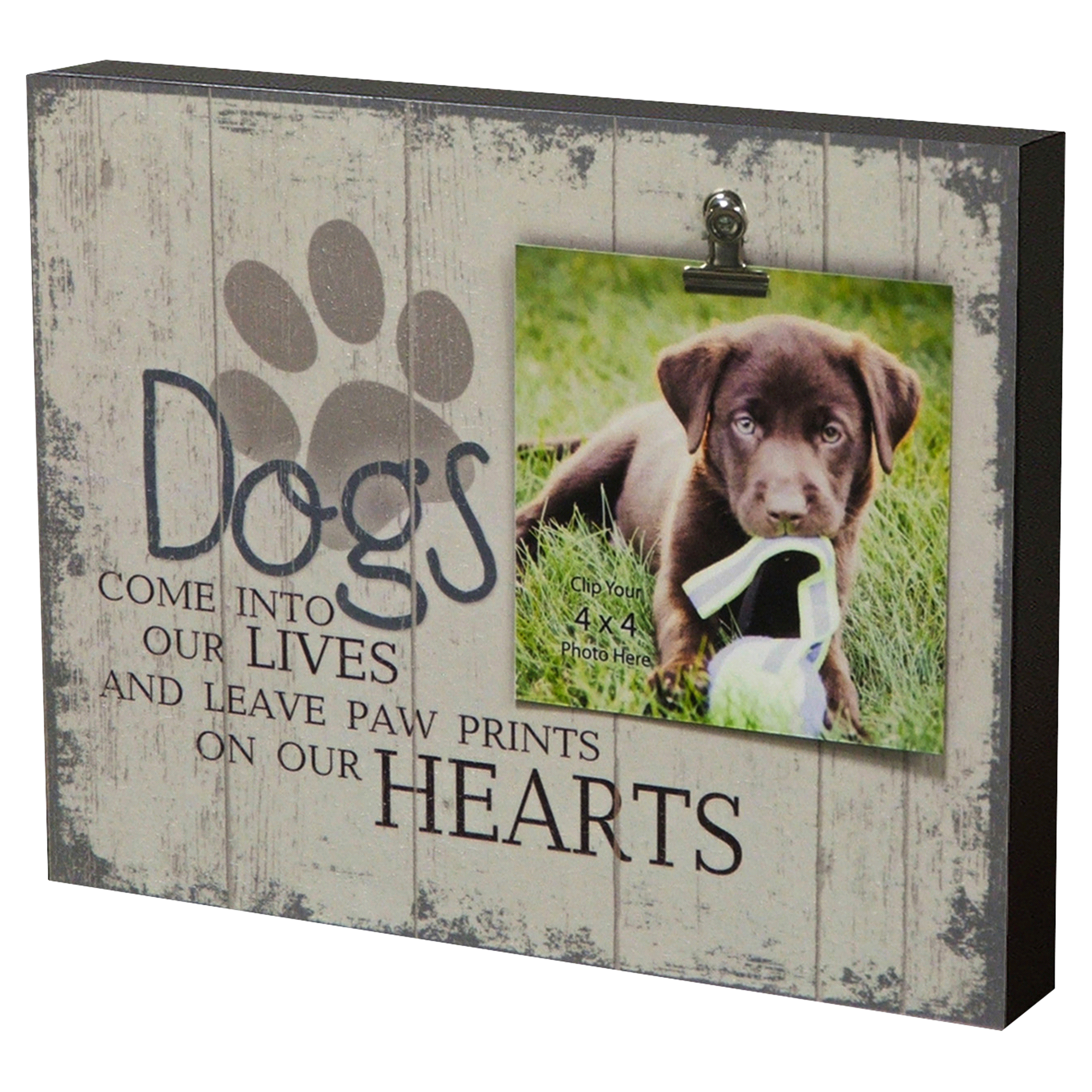 Creative Products Dog Box Frame 8 x 10 | Meijer.com